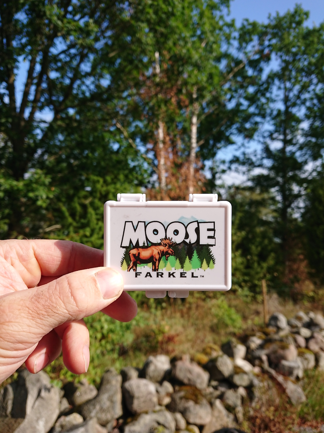 Stay Hungry Spots Magazin Moose